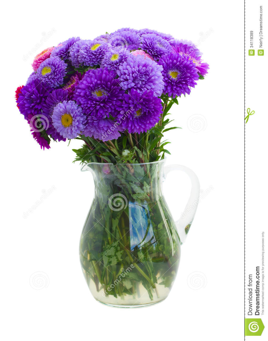 bouquet of purple aster flowers royalty free stock images  image, Beautiful flower