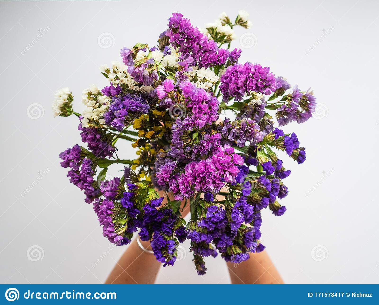 Bouquet Of Purple Dried Flowers In The Hands Of A Woman Flowers Donated To A Loved One Stock Image Image Of Blossom Bouquet 171578417