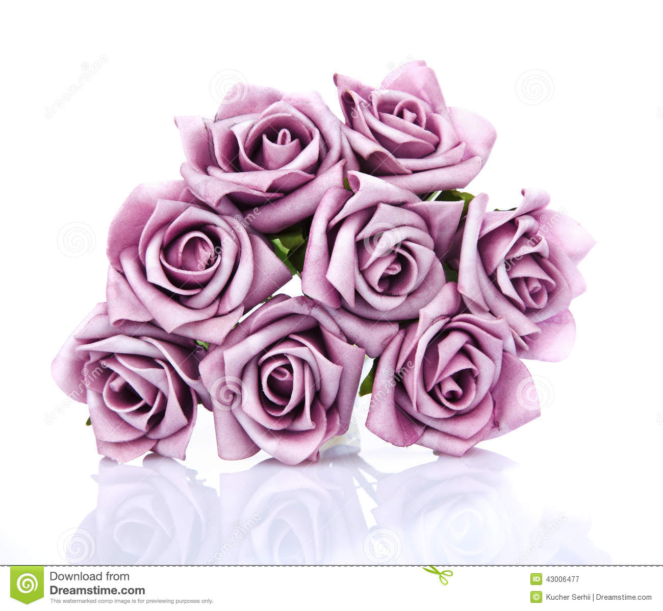 Bouquet Of Purple Roses On A White Background Stock Image Image Of