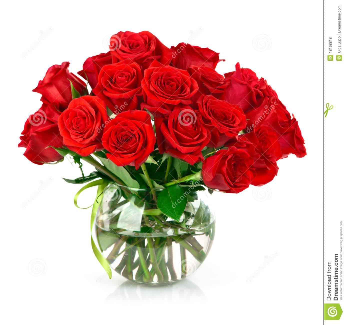 Bouquet Of Red Roses Stock Photo Image Of Festive Nature 18168818