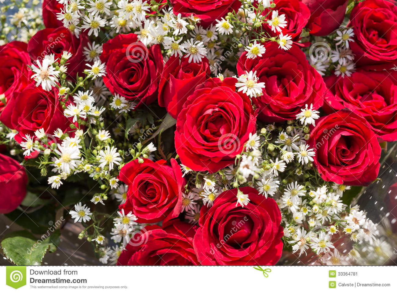 Bouquet Of Red Roses With Baby's Breath Flowers Close Up ...