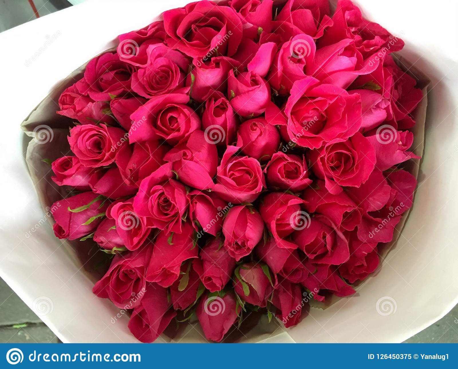 The bouquet of red roses beautiful flowers stock image image of download the bouquet of red roses beautiful flowers stock image image of roses izmirmasajfo