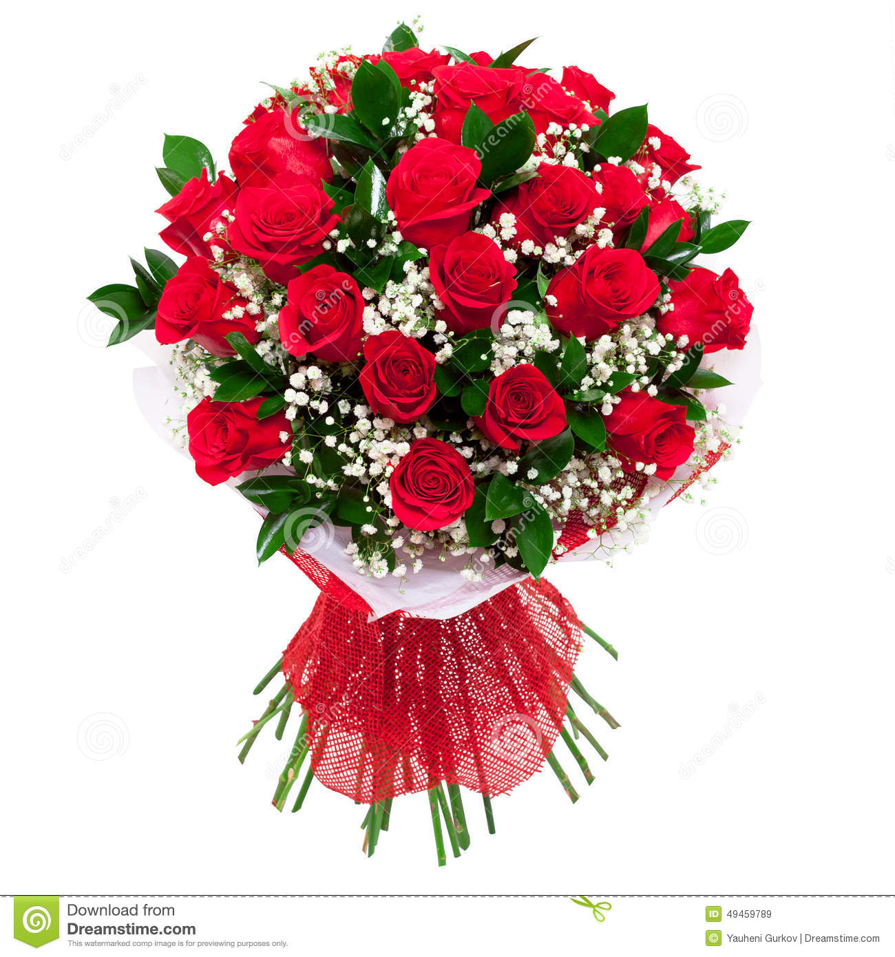 Bouquet Of Red Roses Isolated Stock Image Image Of Bunch Flora
