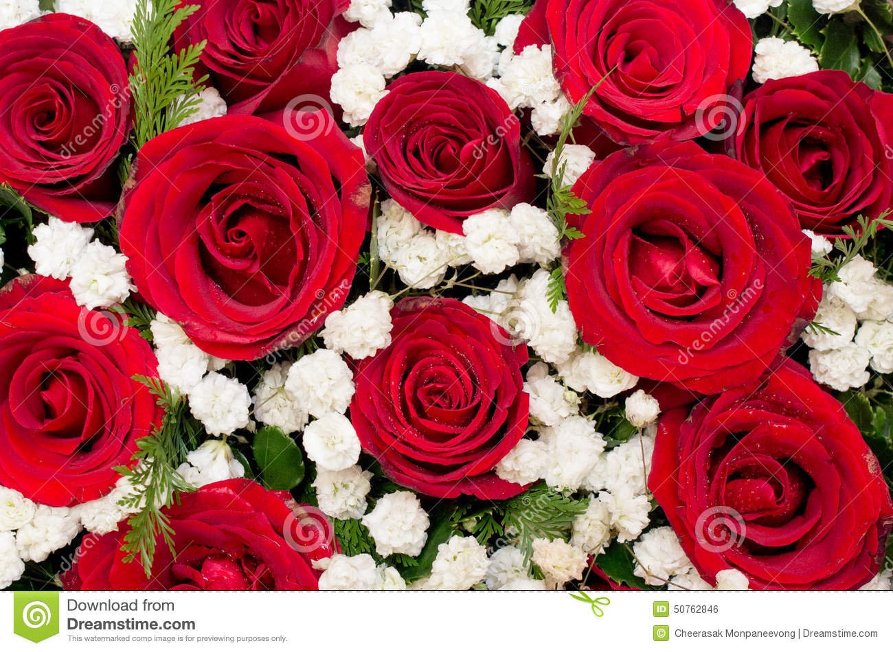 Bouquet Of Red Roses And White Flower In Heart Shaped Box Stock