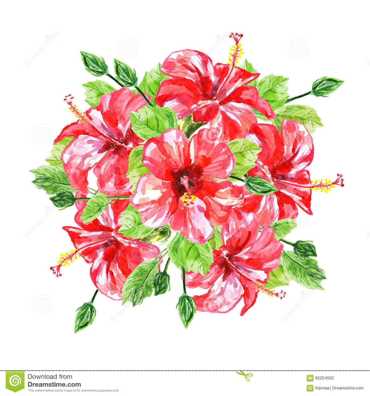 Bouquet from red watercolor hibiscus flowers stock illustration download bouquet from red watercolor hibiscus flowers stock illustration illustration of design drawing izmirmasajfo