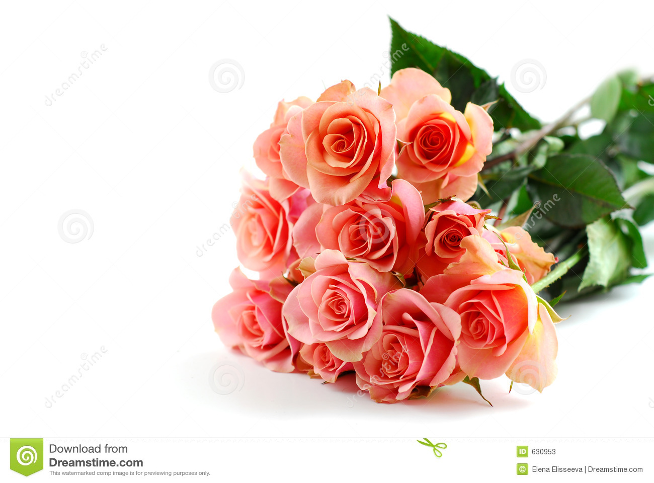 Bouquet rose de rose sur le blanc photos stock image 630953 for Bouquet de rose