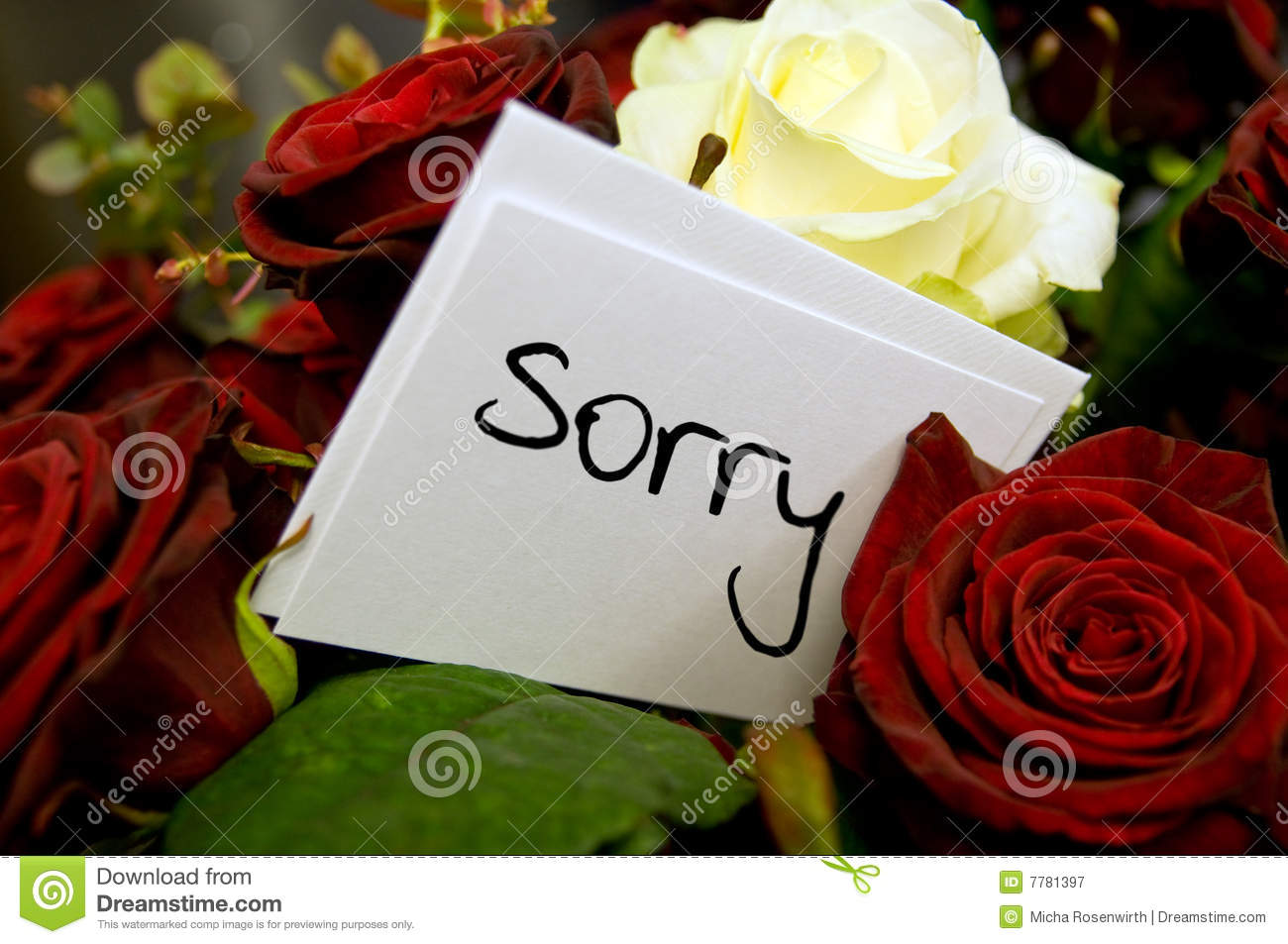 Bouquet Of Roses With Apology Card Stock Image Image Of Bouquet