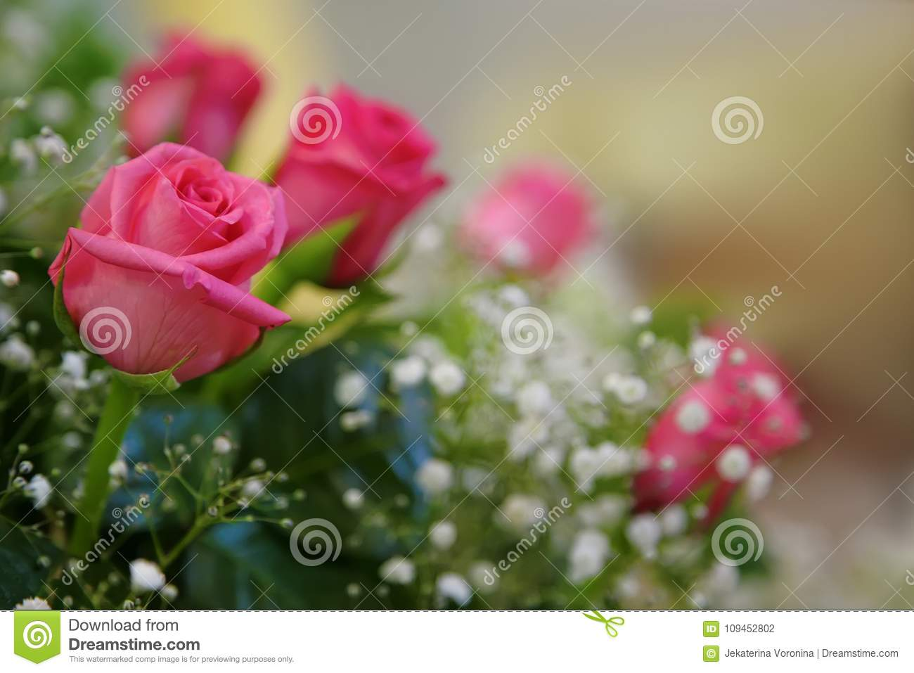 A Bouquet Of Roses With Small White Flowers Stock Photo Image Of