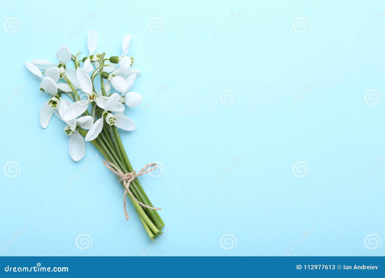 Bouquet of snowdrop flowers
