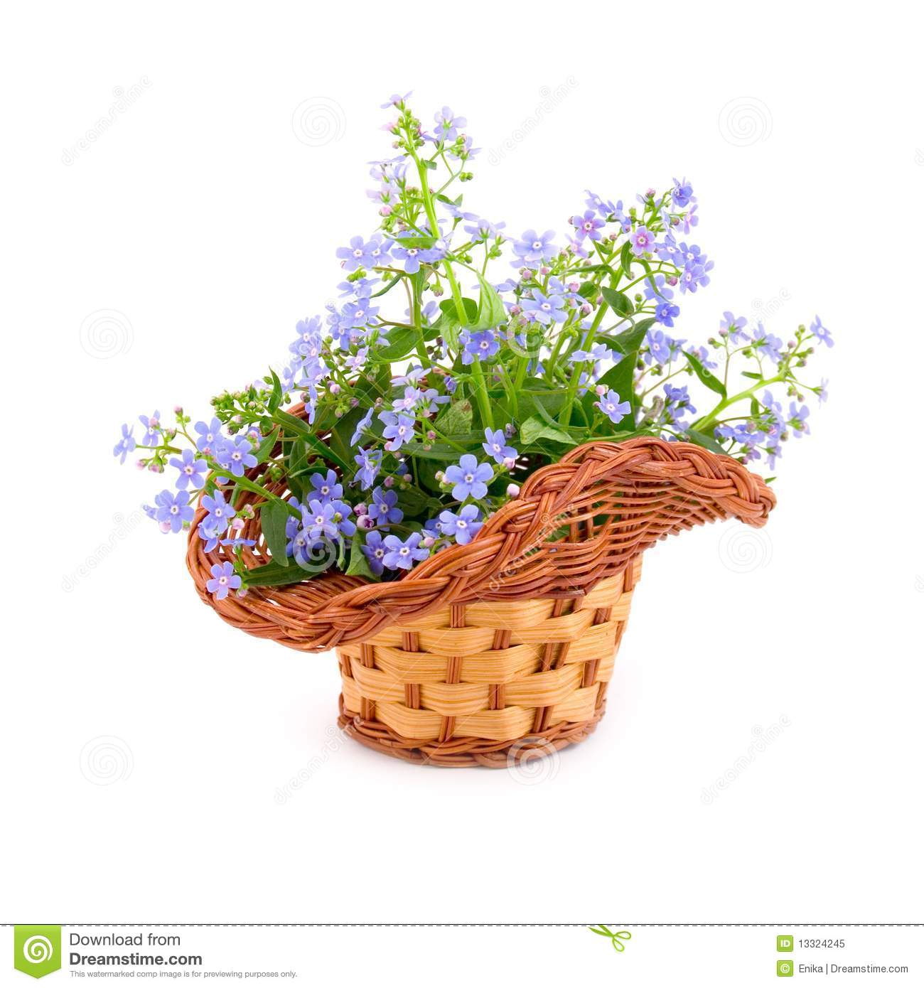 Bouquet Of Spring Flowers Stock Image Image Of Green 13324245