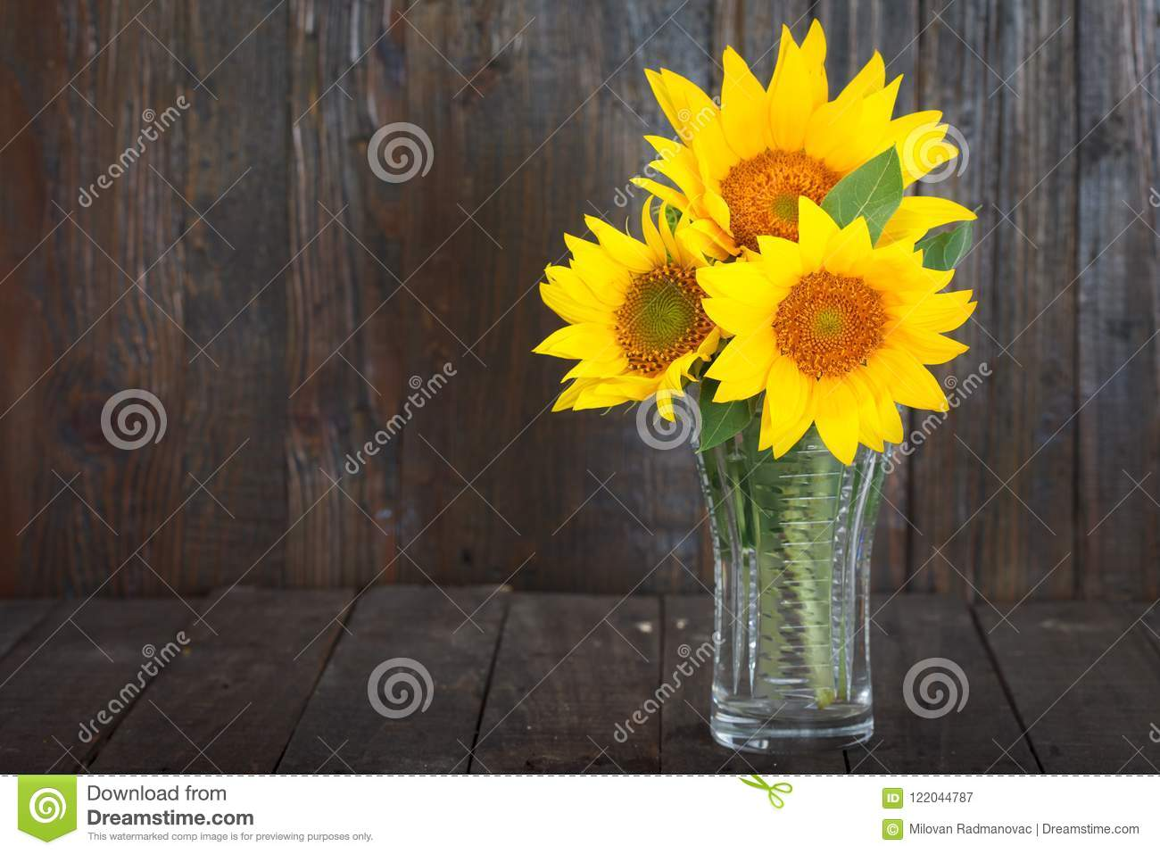 Bouquet Of Sunflowers In Glass Vase Stock Image Image Of Summer Bouquet 122044787