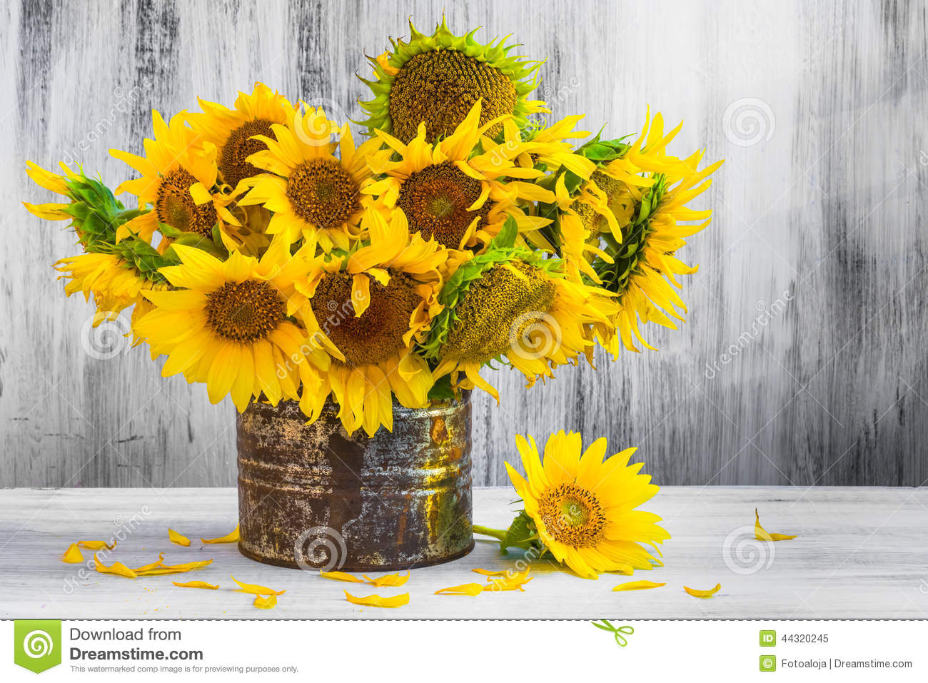 Bouquet Sunflowers Still Life Old Tin