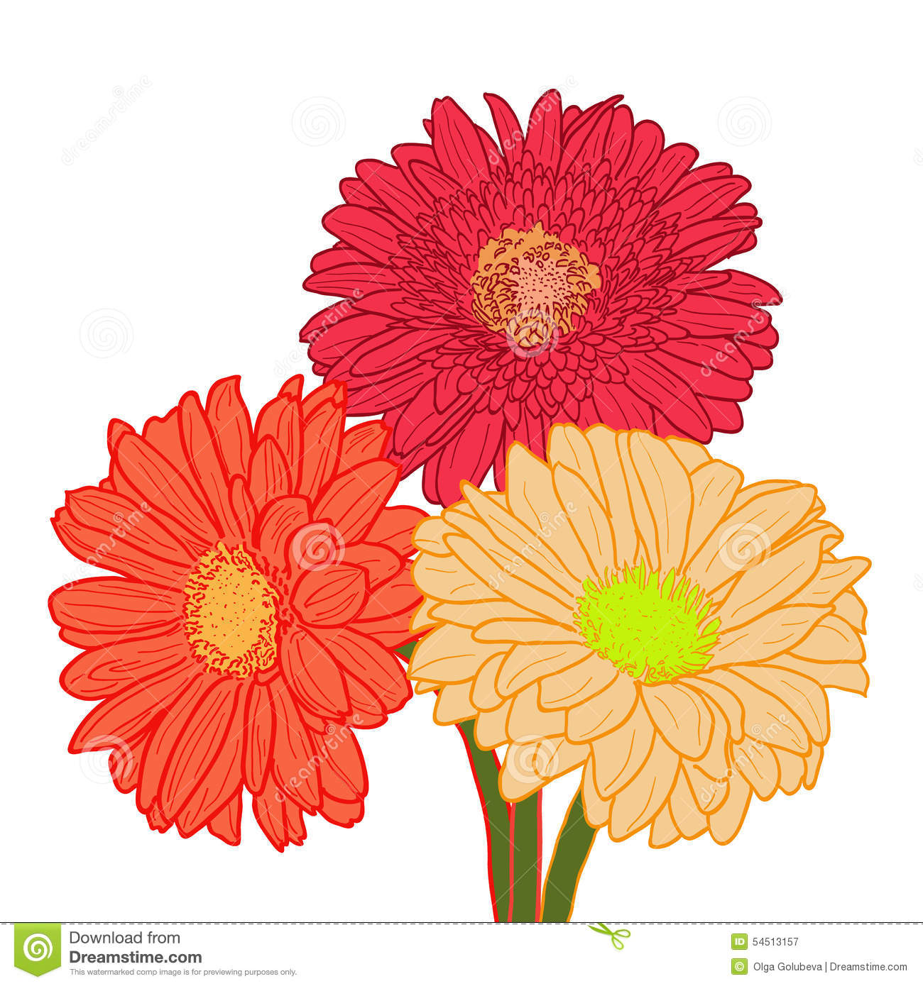Bouquet Of Three Colorful Gerberas. Hand Drawn Stock Vector ...