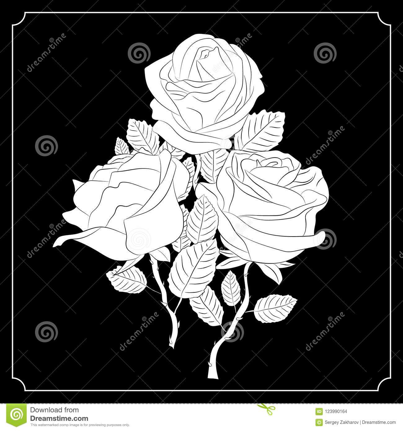 A Bouquet Of Three Roses Black And White Drawing Calligraphy