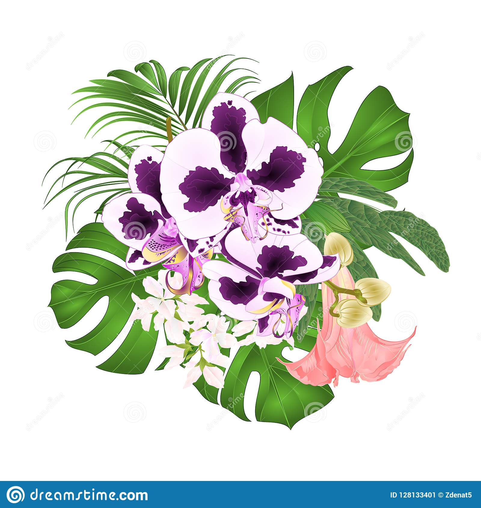 Bouquet With Tropical Flowers Floral Arrangement With Beautiful Spoted Orchid Phalaenopsis Palm Philodendron And Brugmansia Vi Stock Vector Illustration Of Design Botanical 128133401