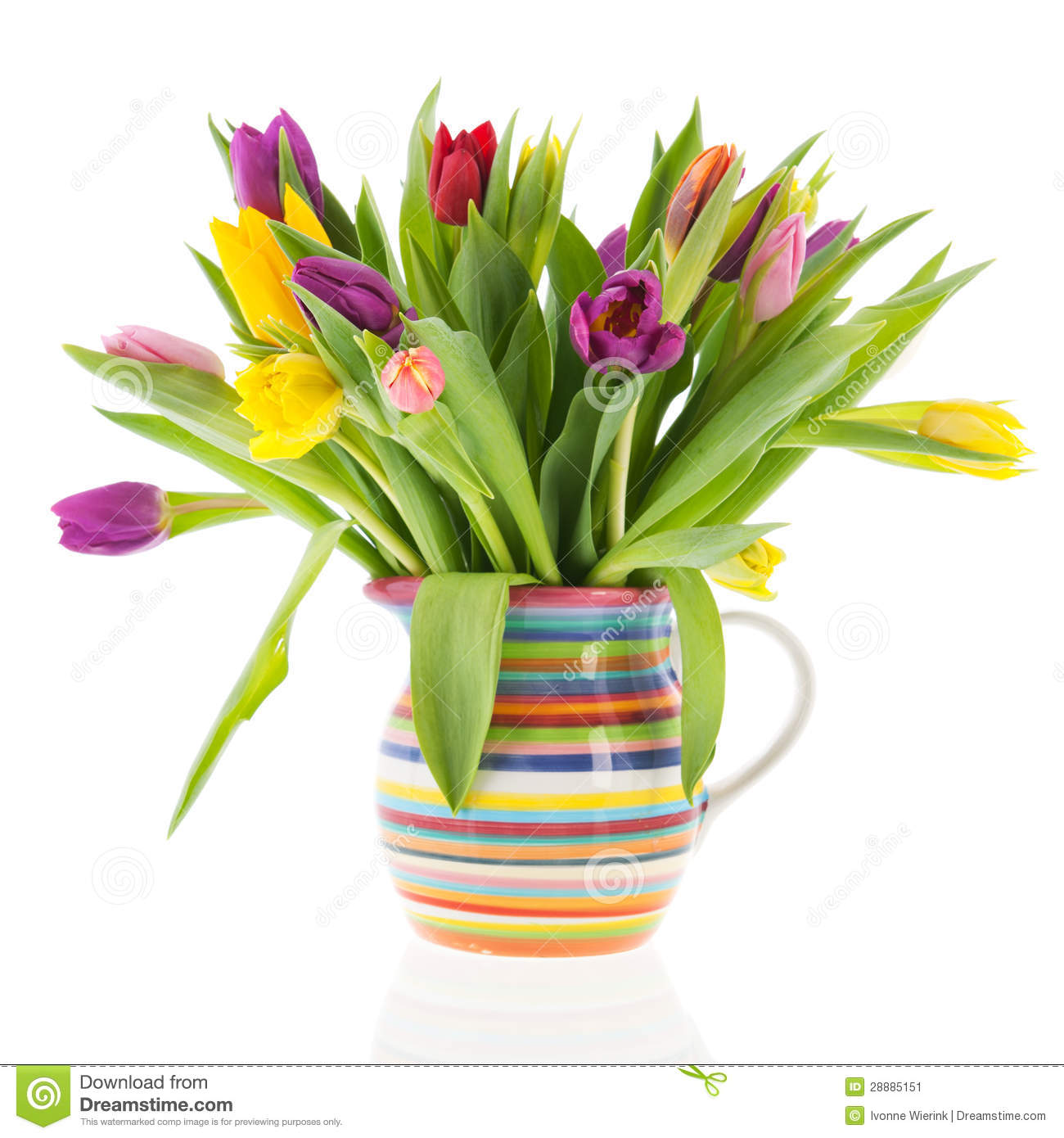 Bouquet tulips in vase with stripes stock image image of bouquet royalty free stock photo reviewsmspy