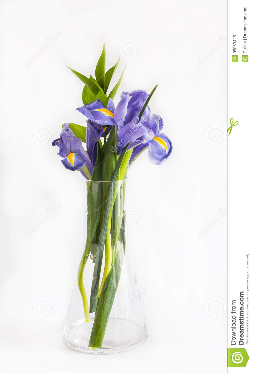 Bouquet of violet lily flowers stock photo image of blooming bouquet of violet lily flowers izmirmasajfo