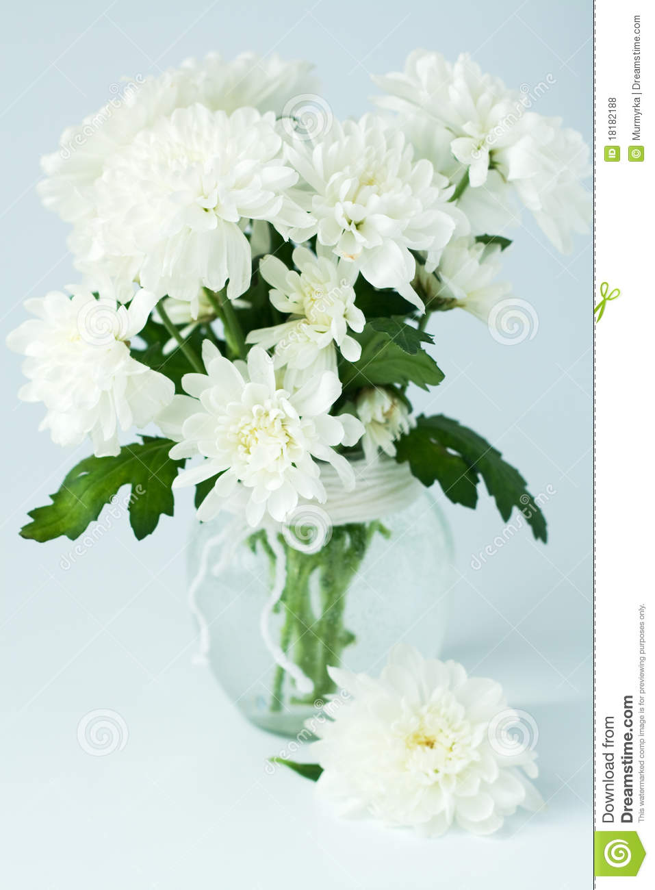 Bouquet Of White Flowers In A Glass Vase Stock Photo Image Of