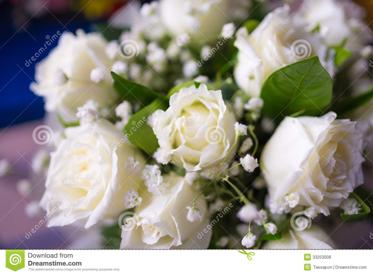 Bouquet Of White Rose Flowers Stock Photo 33253008 Megapixl