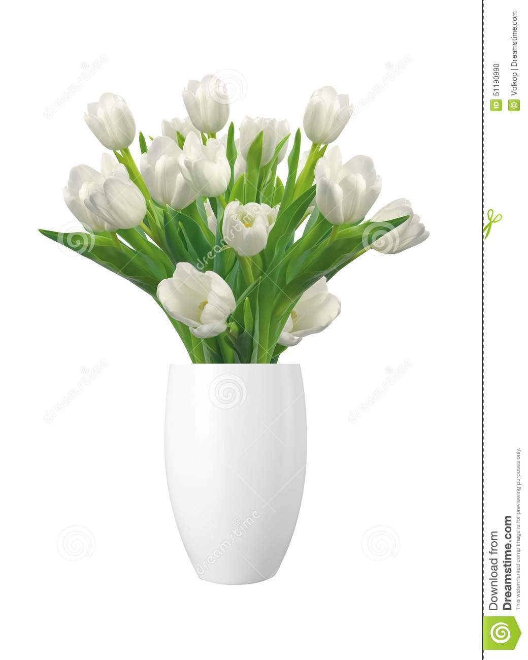 Bouquet Of White Tulips In Vase Isolated On White Stock ...