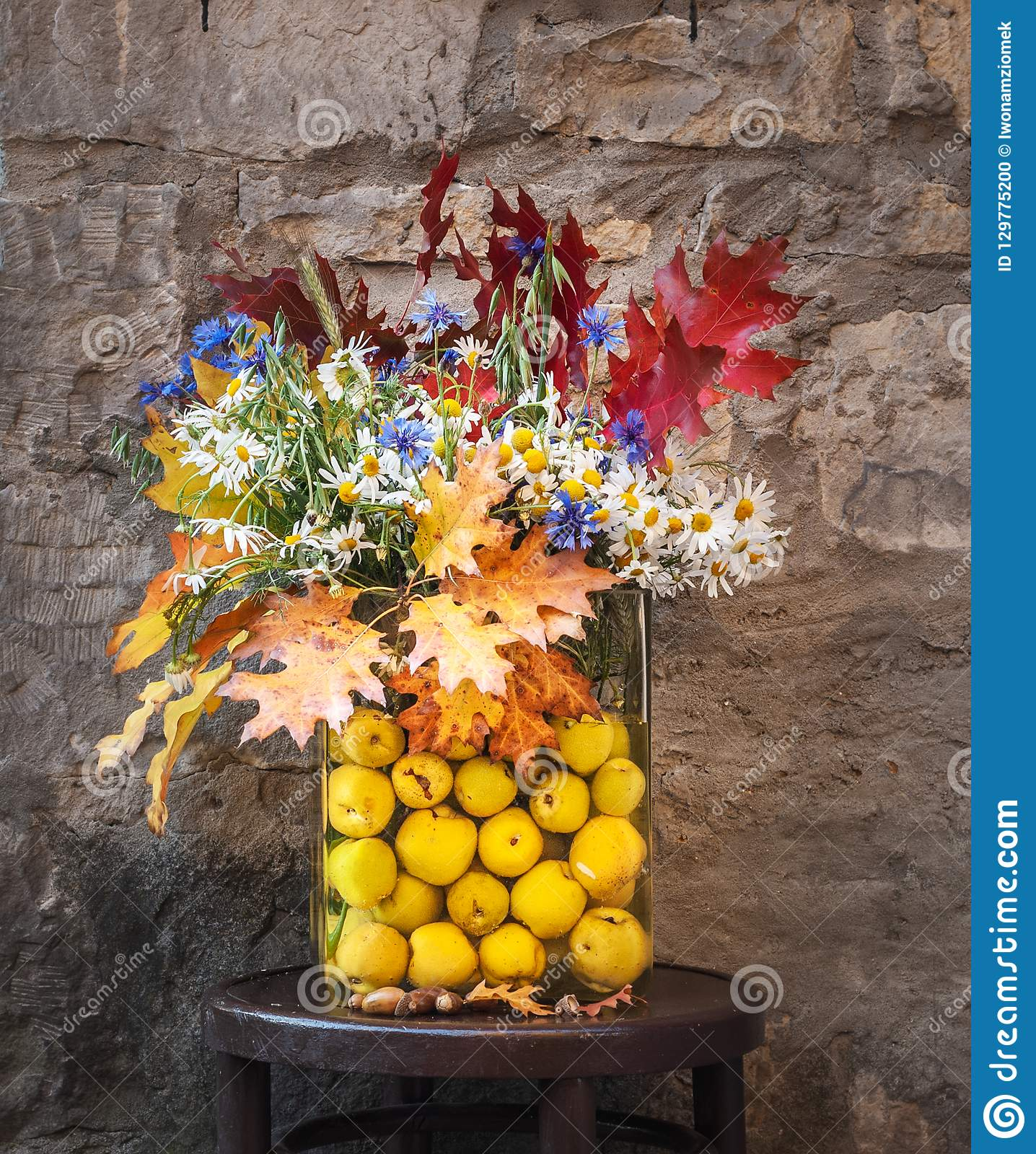Bouquet of wild flowers and colorful autumn leaves. Autumnal bouquet in a glass vase with quince fruits. Old wall in the background. & Bouquet Of Wild Flowers And Colorful Autumn Leaves. Stock Photo ...