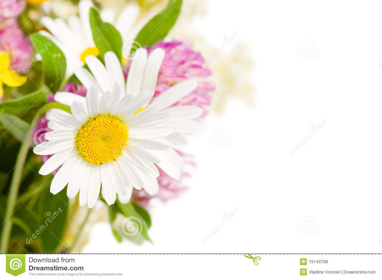 Bouquet of wild flowers isolated over white