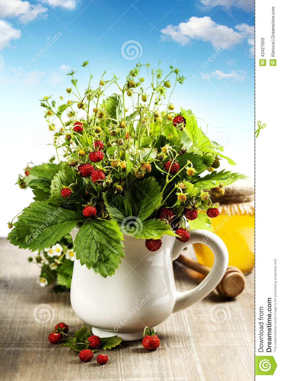 Bouquet Of Wild Strawberry With Herbal Tea And Honey Stock