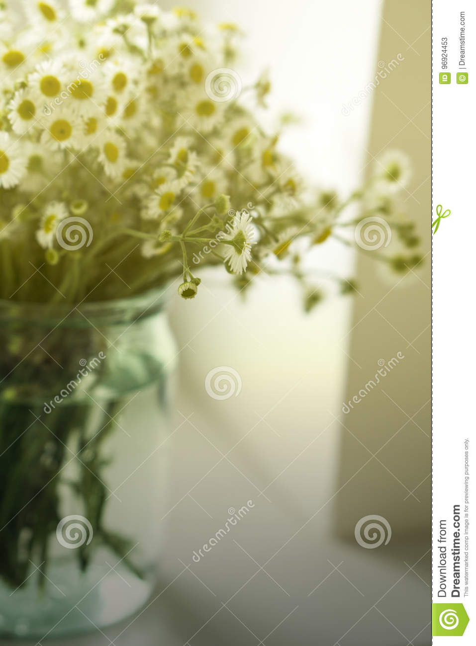 A bouquet of wildflowers camomiles in a glass jar on a table by the window. Vintage tone