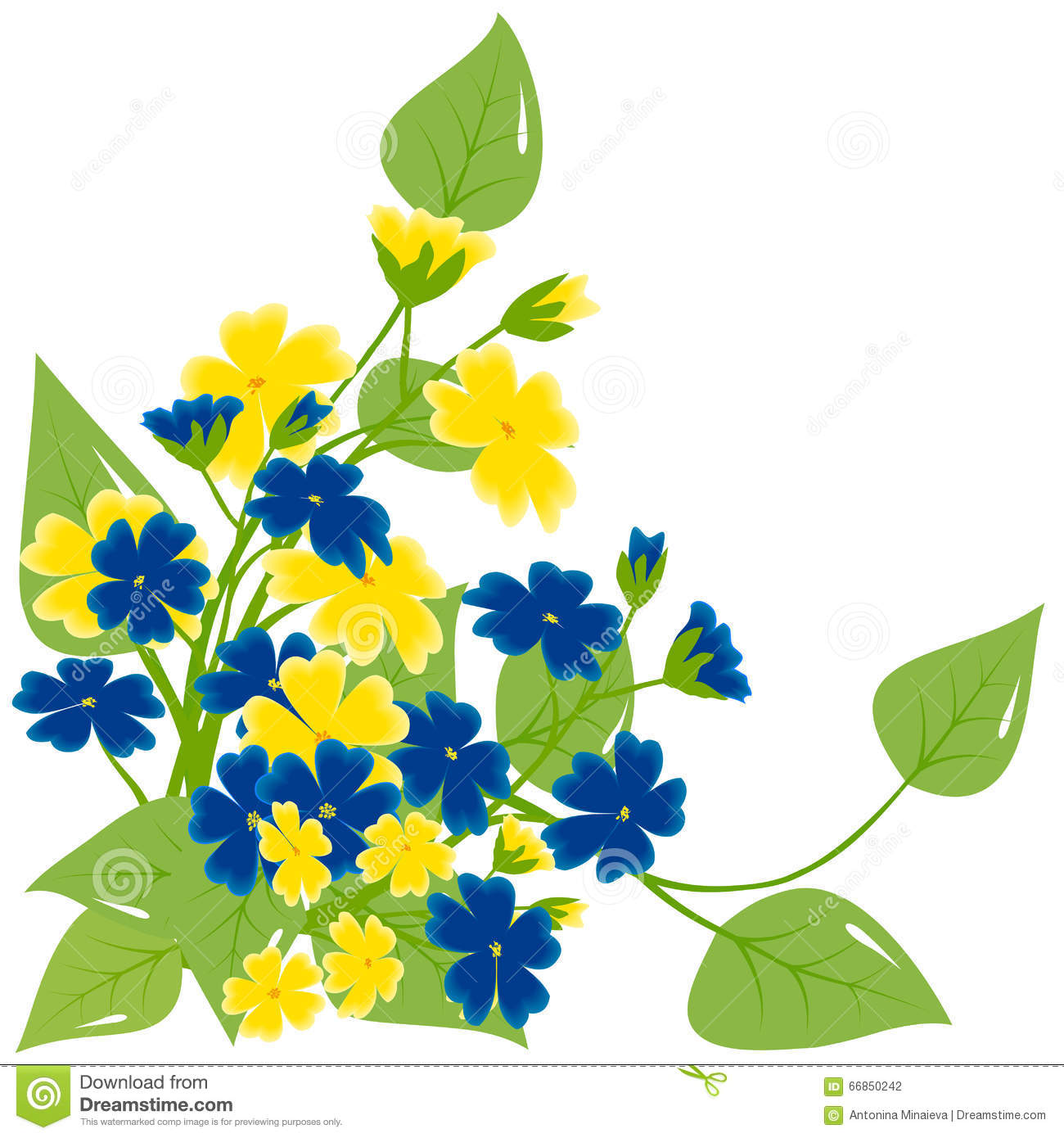 Bouquet Yellow And Blue Flowers Stock Illustration Illustration Of