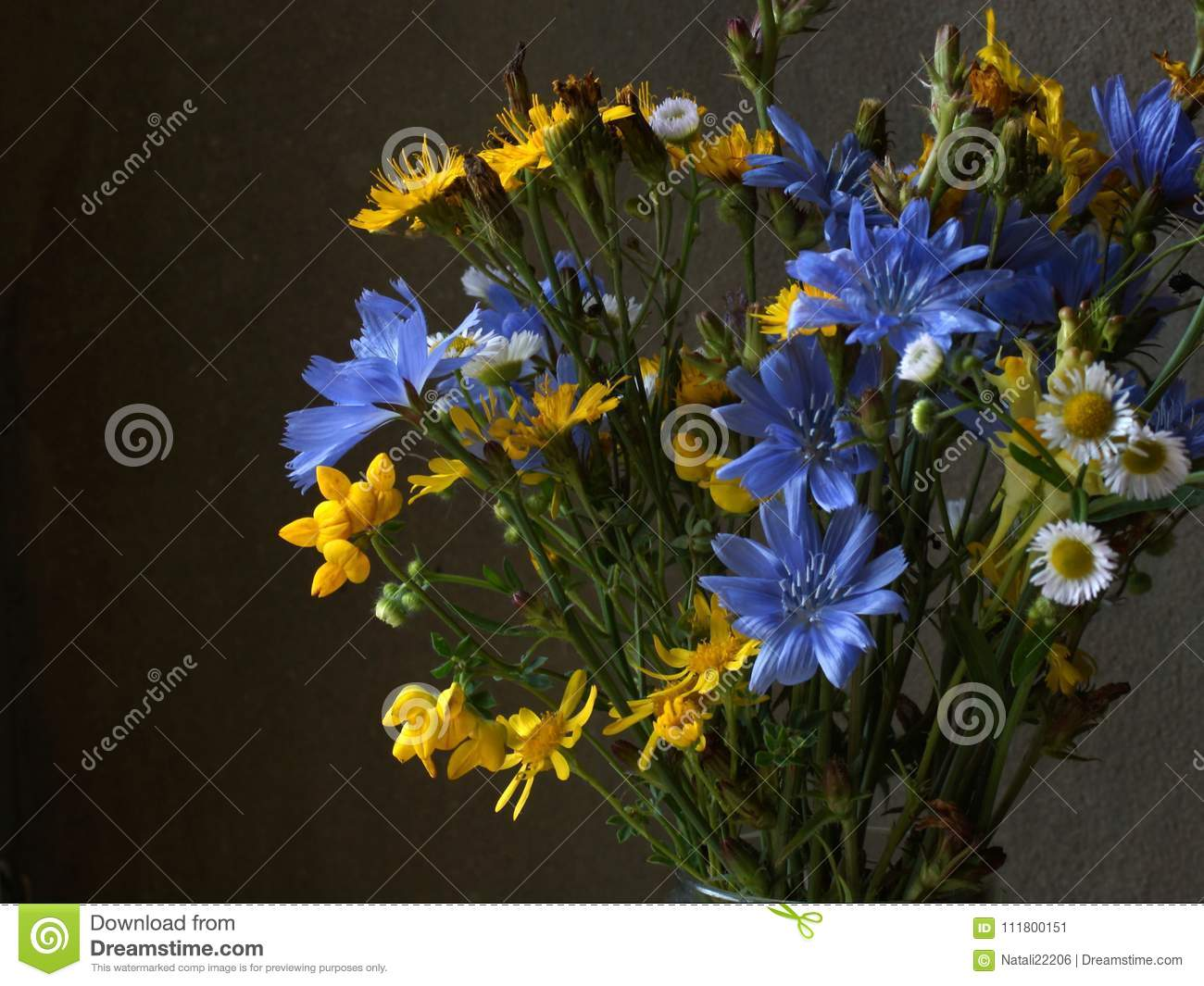 Fiori Gialli Mazzo.Bouquet Of Yellow And Blue Meadow Flowers Stock Image Image Of