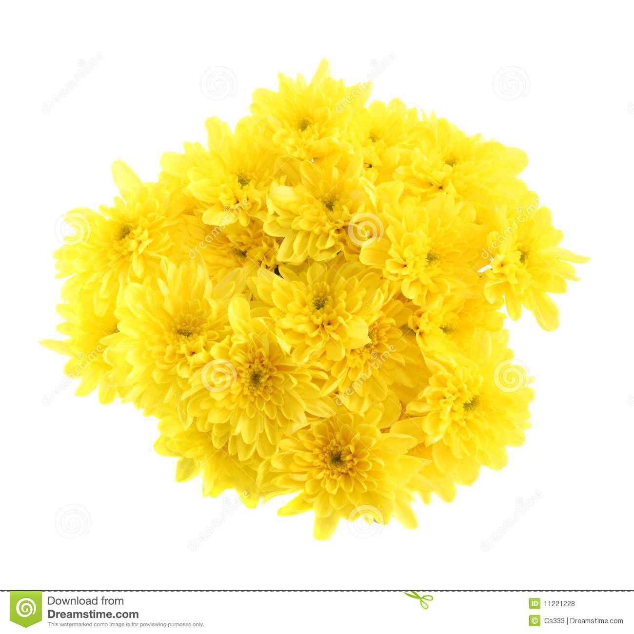 The Bouquet Of Yellow Chrysanthemums Royalty Free Stock ...