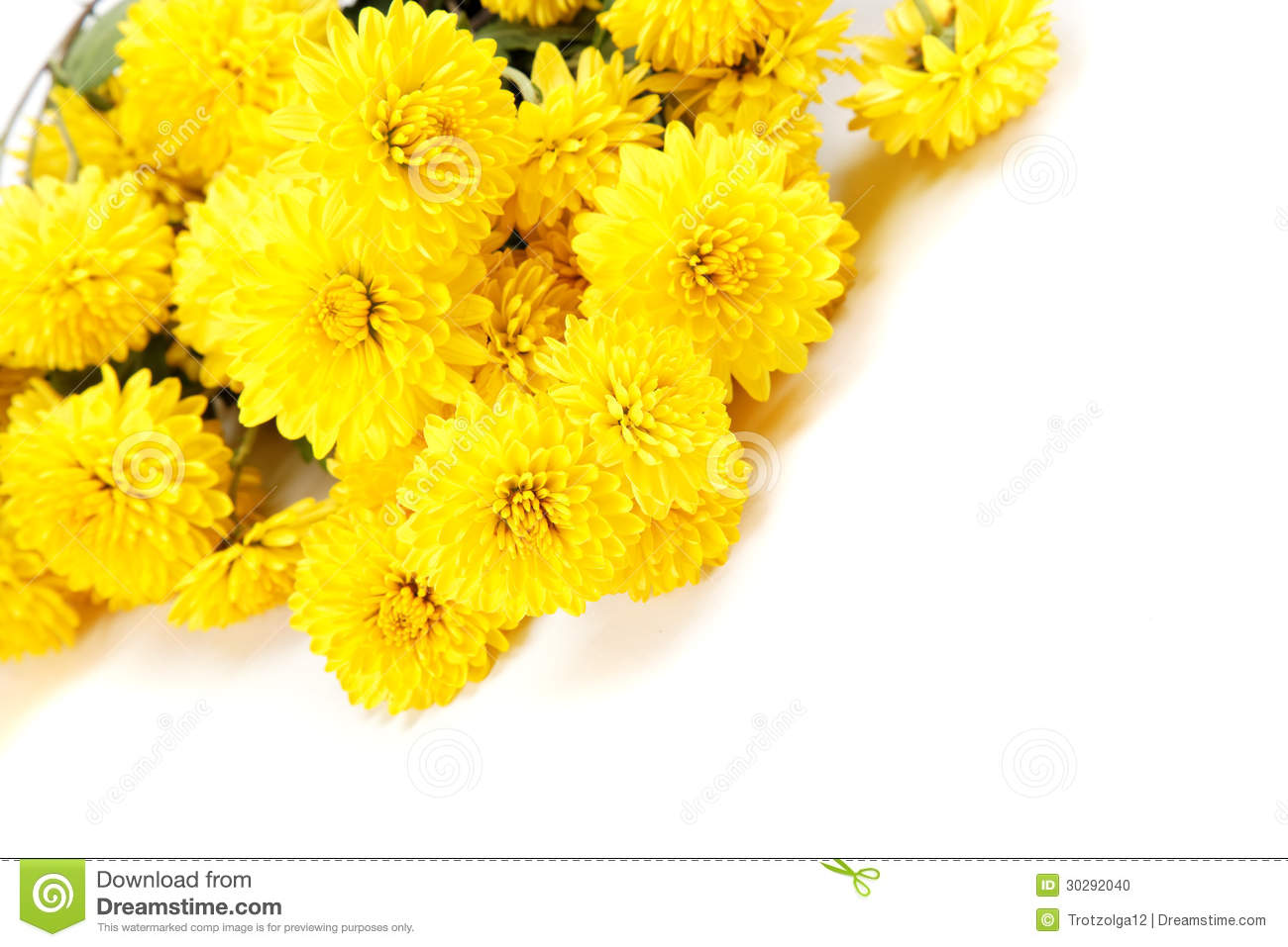 Bouquet Of Yellow Flowers, Chrysanthemums. Stock Photo ...