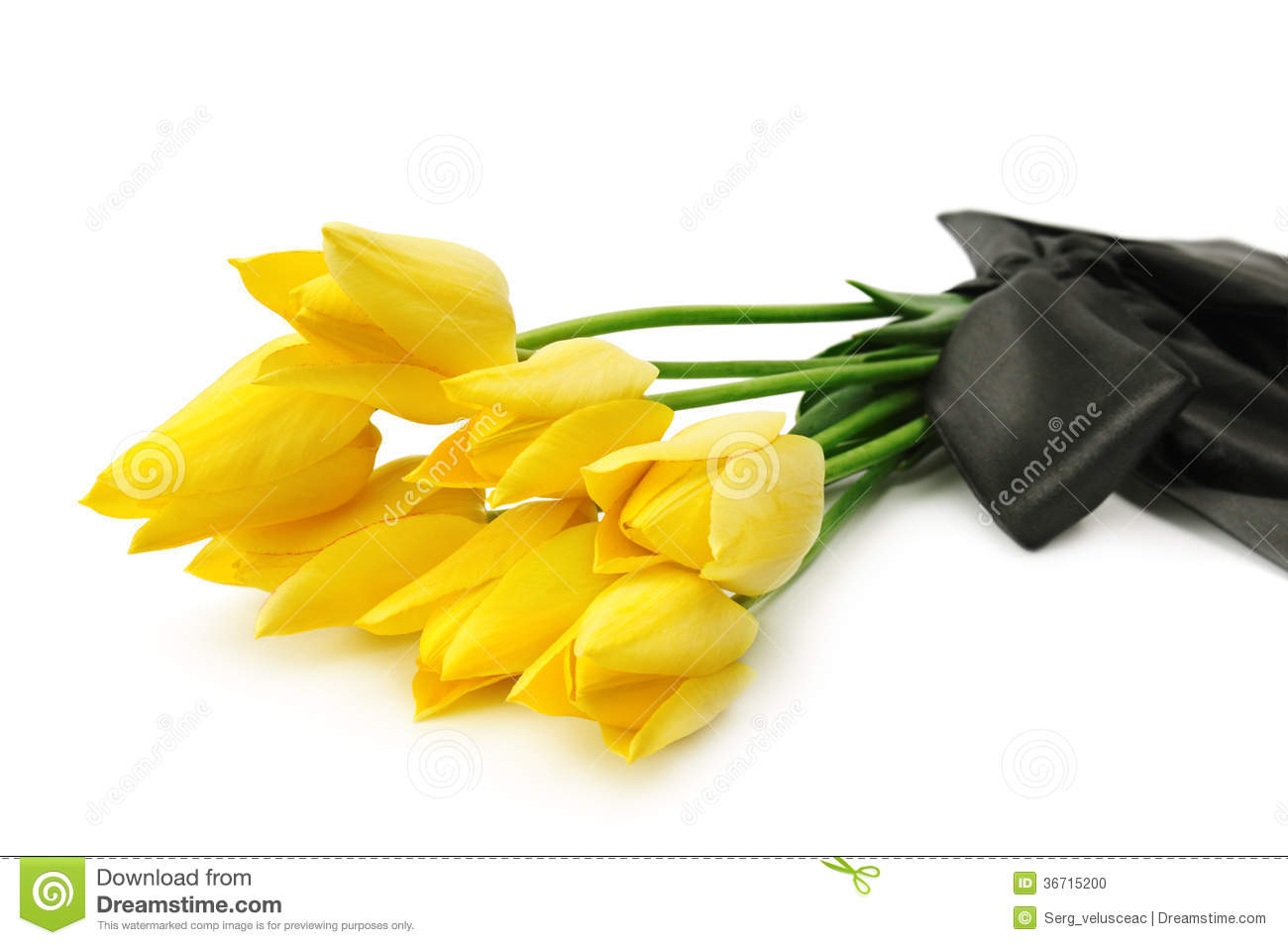 Bouquet Of Yellow Flowers Stock Photo Image Of Bunch 36715200