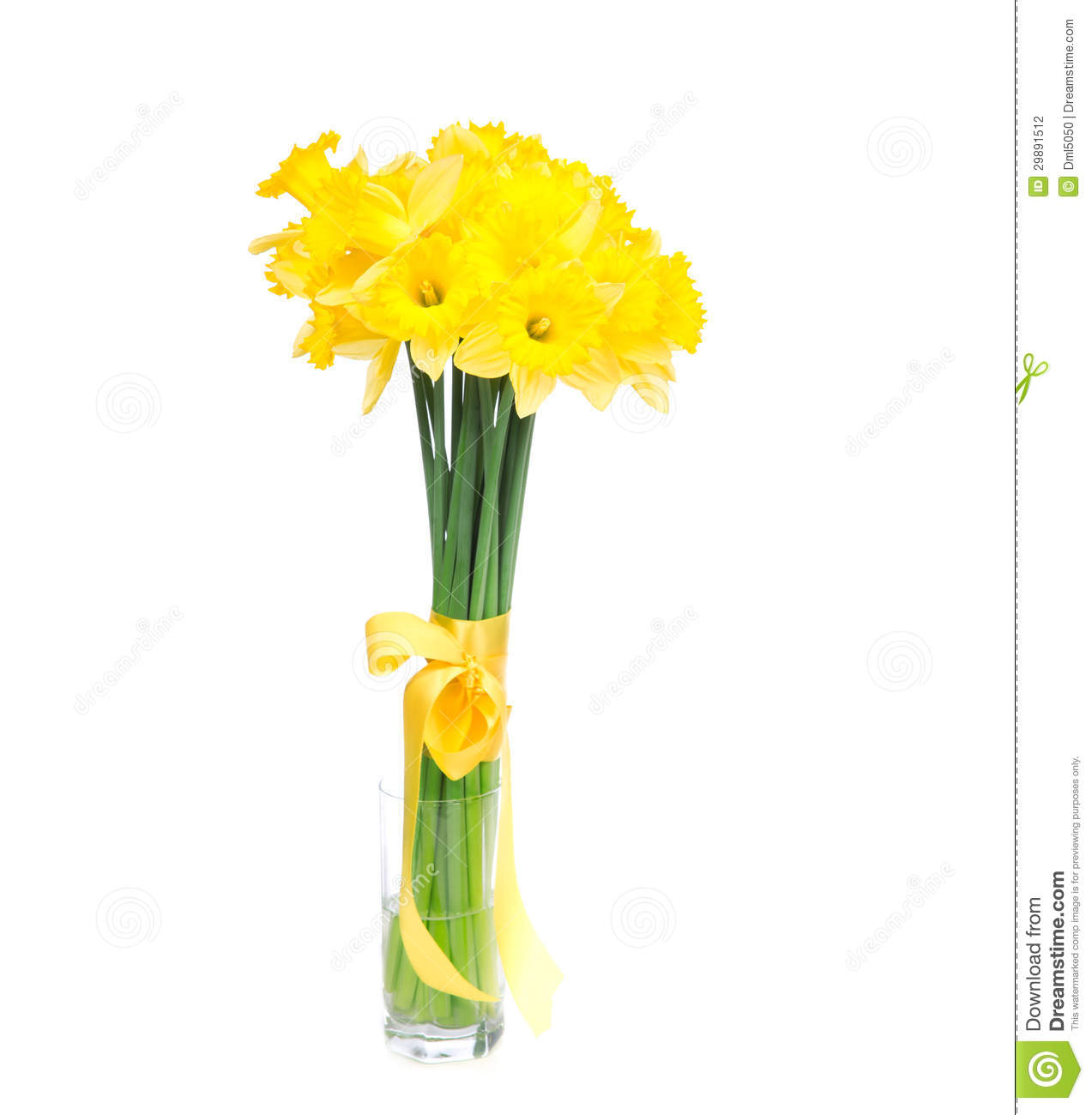 bouquet of yellow lent lily daffodil or narcissus stock daffodil clip art black daffodil clip art