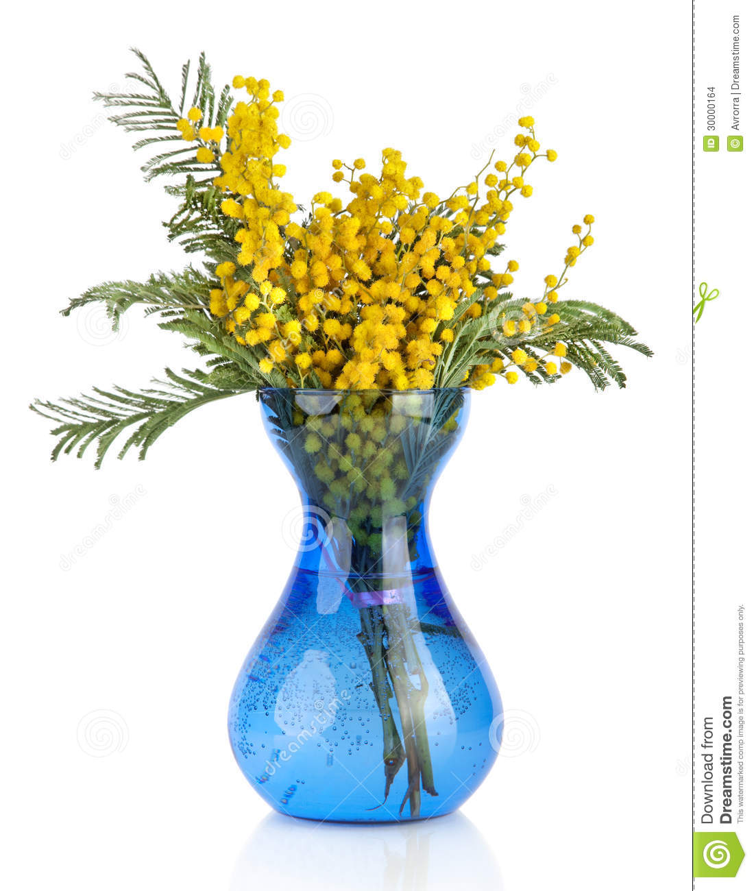 Bouquet of yellow mimosa acacia flowers in blue glass vase stock royalty free stock photo dhlflorist Gallery