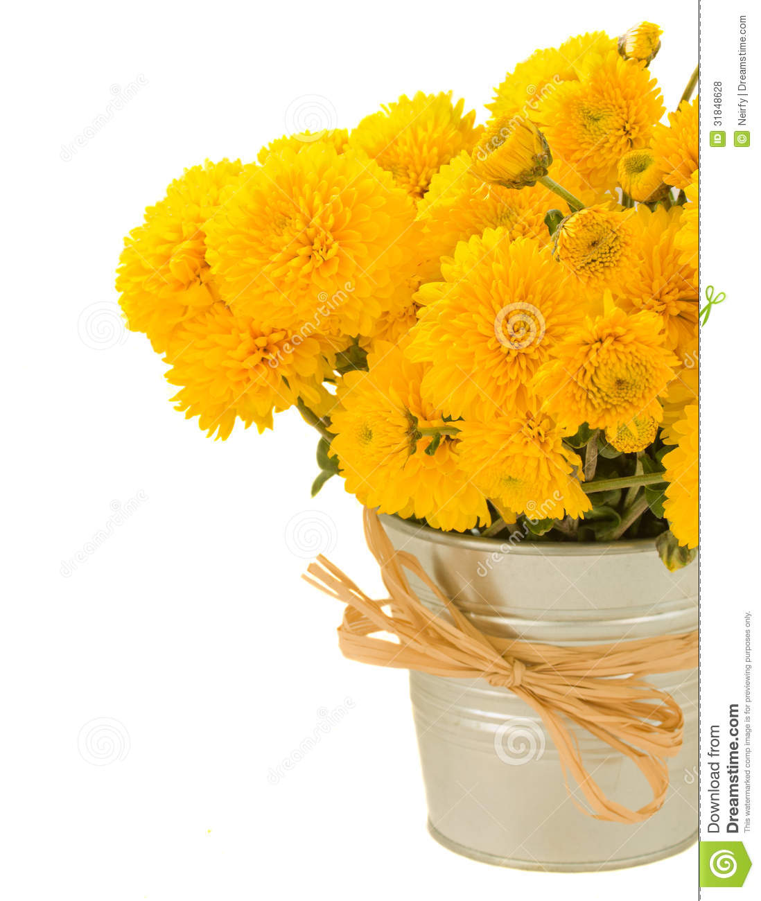 Fall Flower Mums: Bouquet Of Yellow Mums In Pot Royalty Free Stock Photos