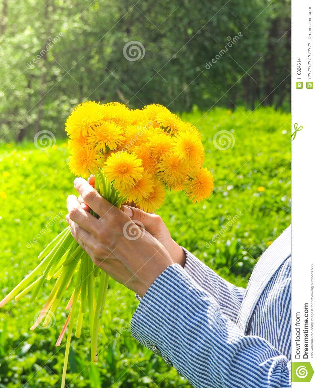 A Bouquet Of Yellow Wild Flowers In Your Hand Against A Green Meadow