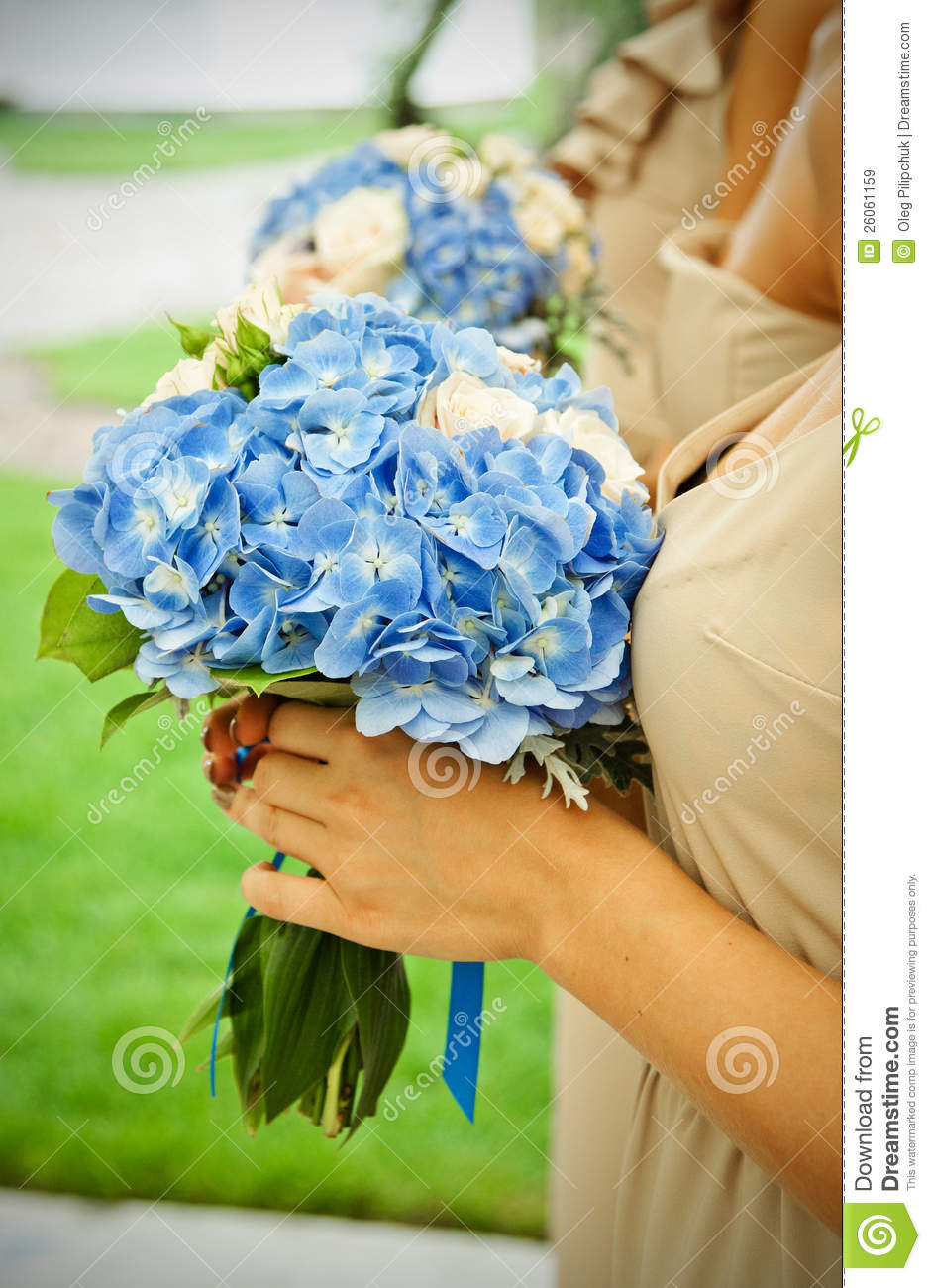 Bouquets With Dark Blue Violets Stock Image - Image of ...