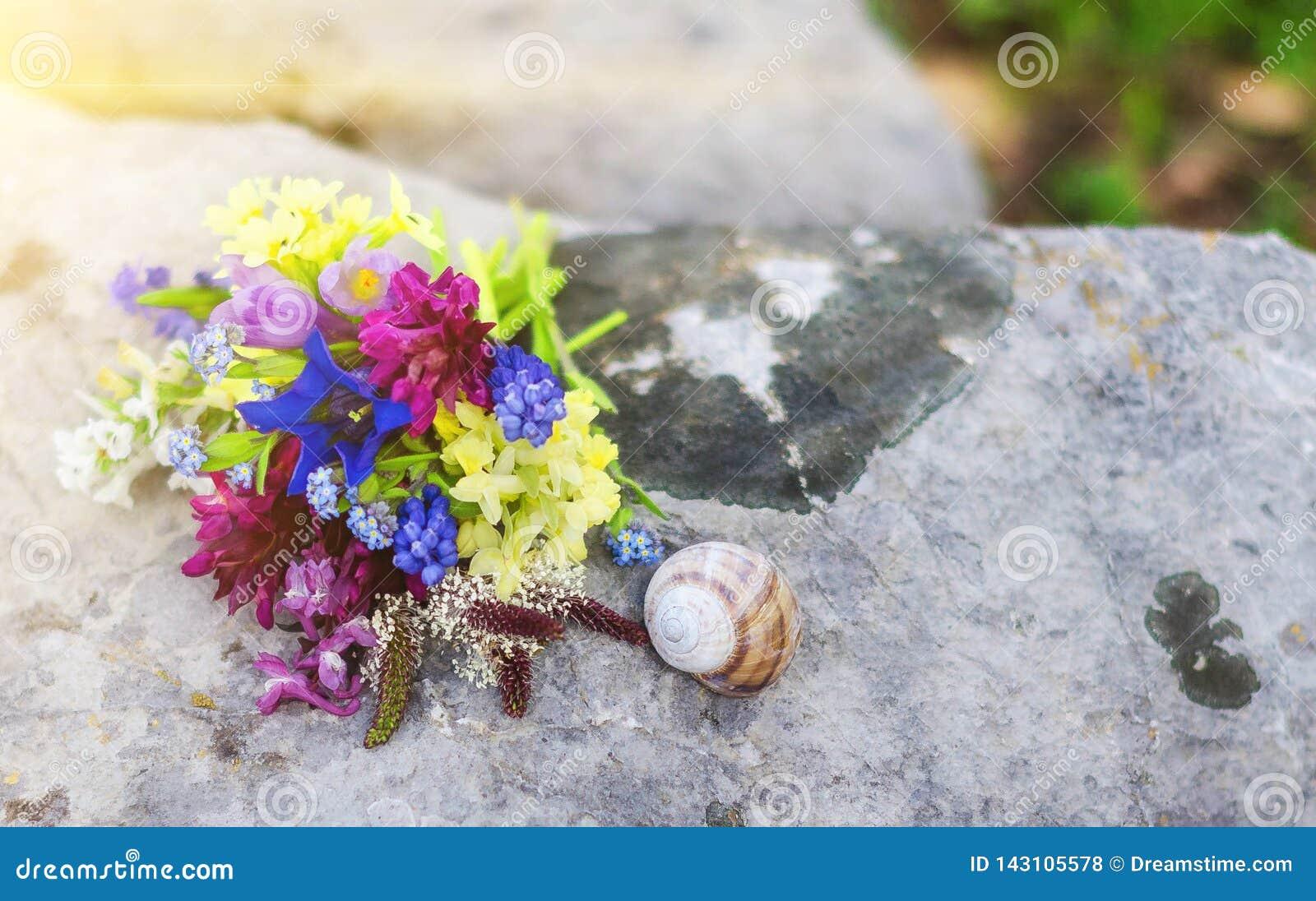Bouquette kwiaty i ślimaczek na dużym szarym głazie
