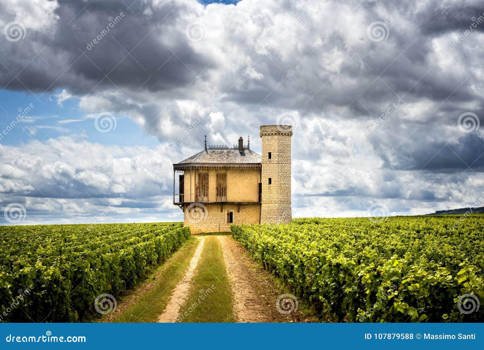 Bourgondië, Chateau DE La Tour en wijngaarden, Clos DE Vougeot frankrijk