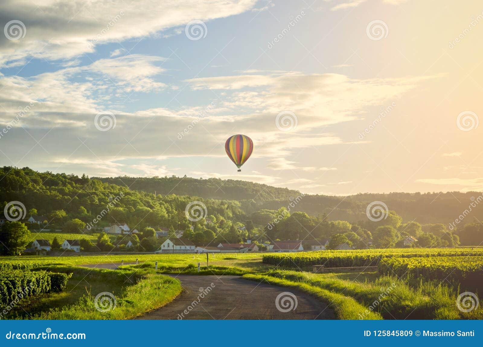Bourgondië Hete luchtballon over de wijngaarden van Bourgondië frankrijk