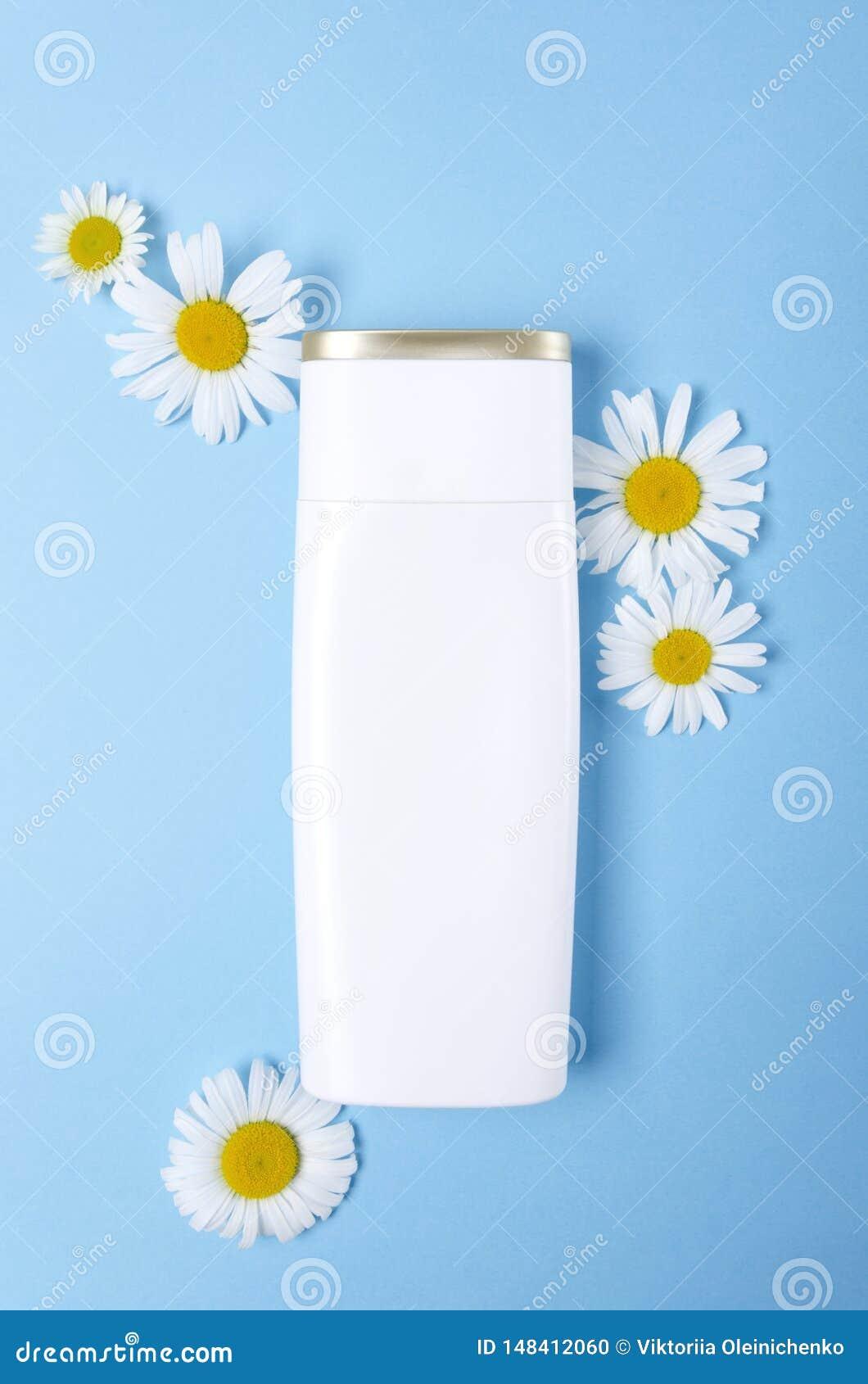 Bouteille blanche de gel de shampooing ou de douche et de camomilles naturelles sur le fond bleu Paquet cosm?tique