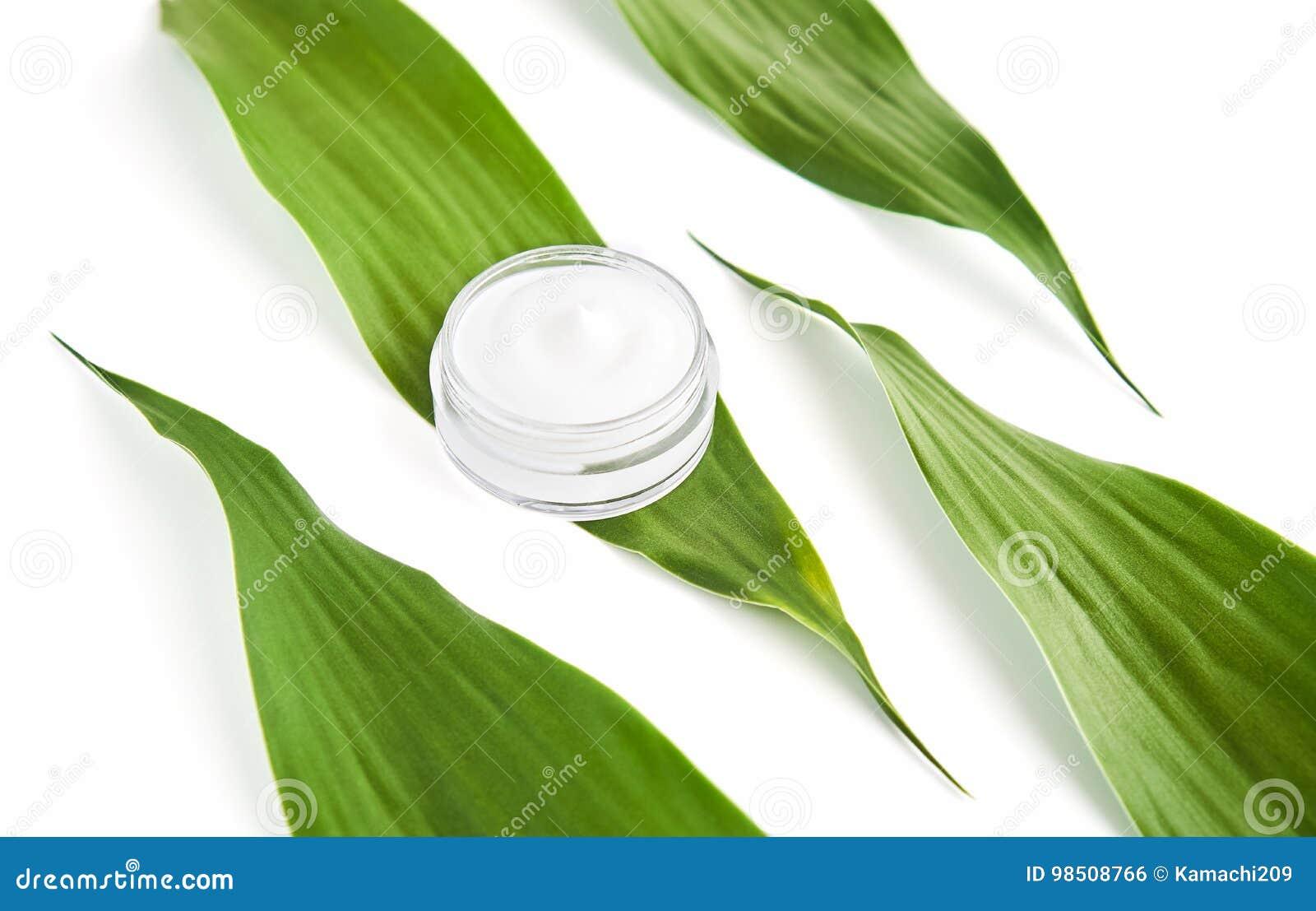 Bouteille crème blanche placée, paquet vide de label pour la moquerie sur un fond vert de feuillage Le concept des produits de be