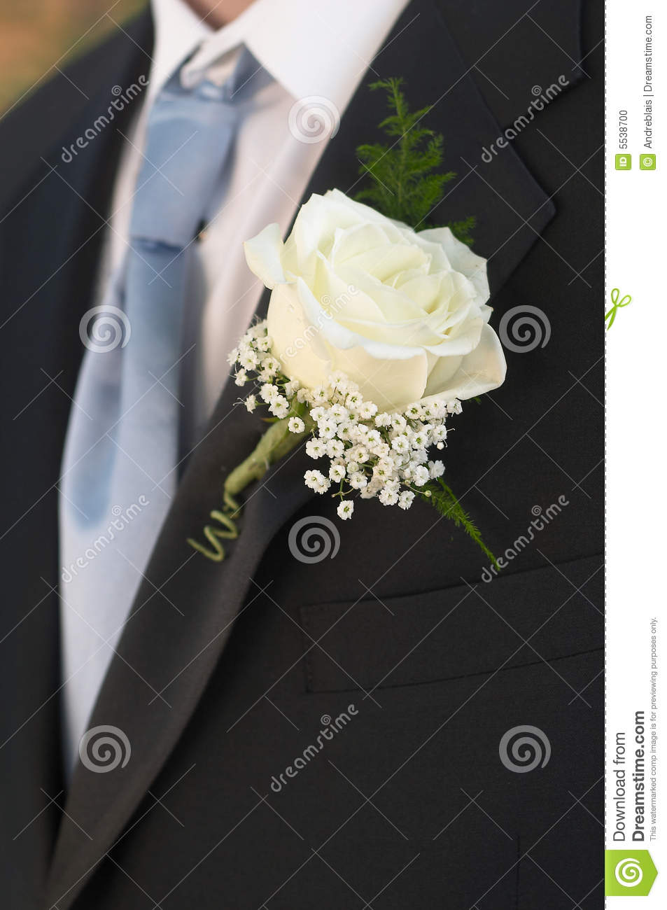boutonniere de mariage photo stock image 5538700. Black Bedroom Furniture Sets. Home Design Ideas
