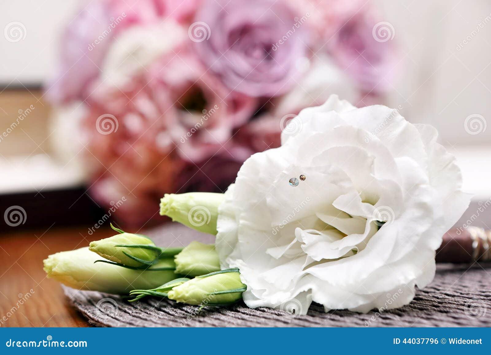 Boutonniere Hochzeit Der Weissen Blume Fur Den Brautigam Stockfoto