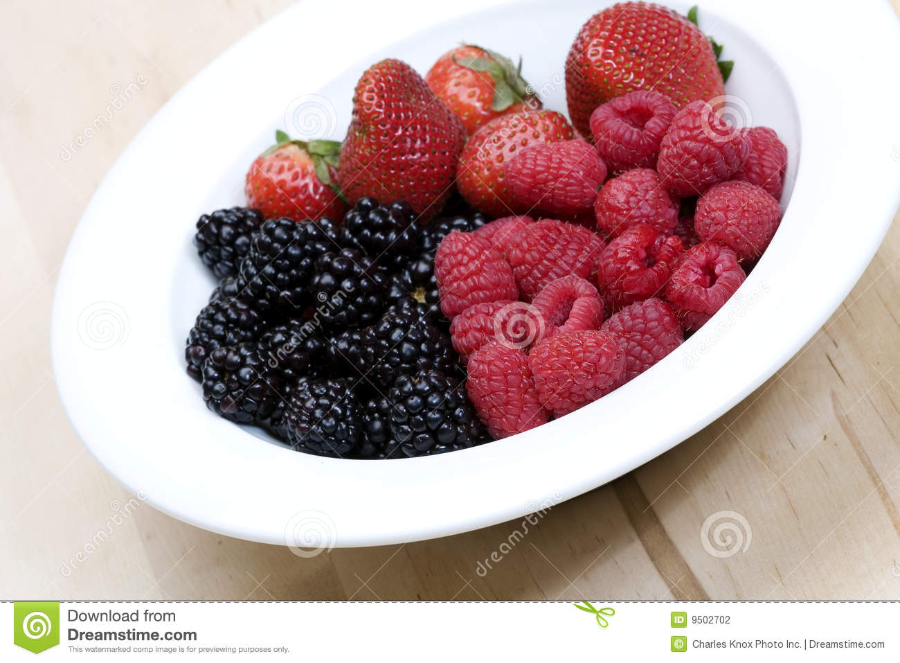 Download Bowl of fresh berries stock photo. Image of cook, tasty - 9502702
