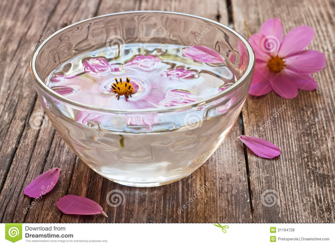 Bowl Water Floating Flower Stock Images Download 1 143 Royalty