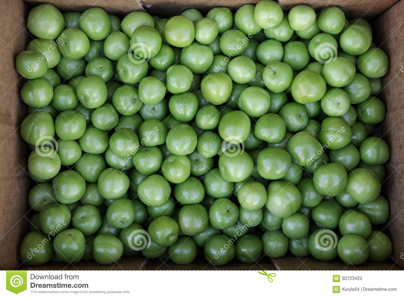 A box of Greengage plums fruits for sale in a vegetable shop.