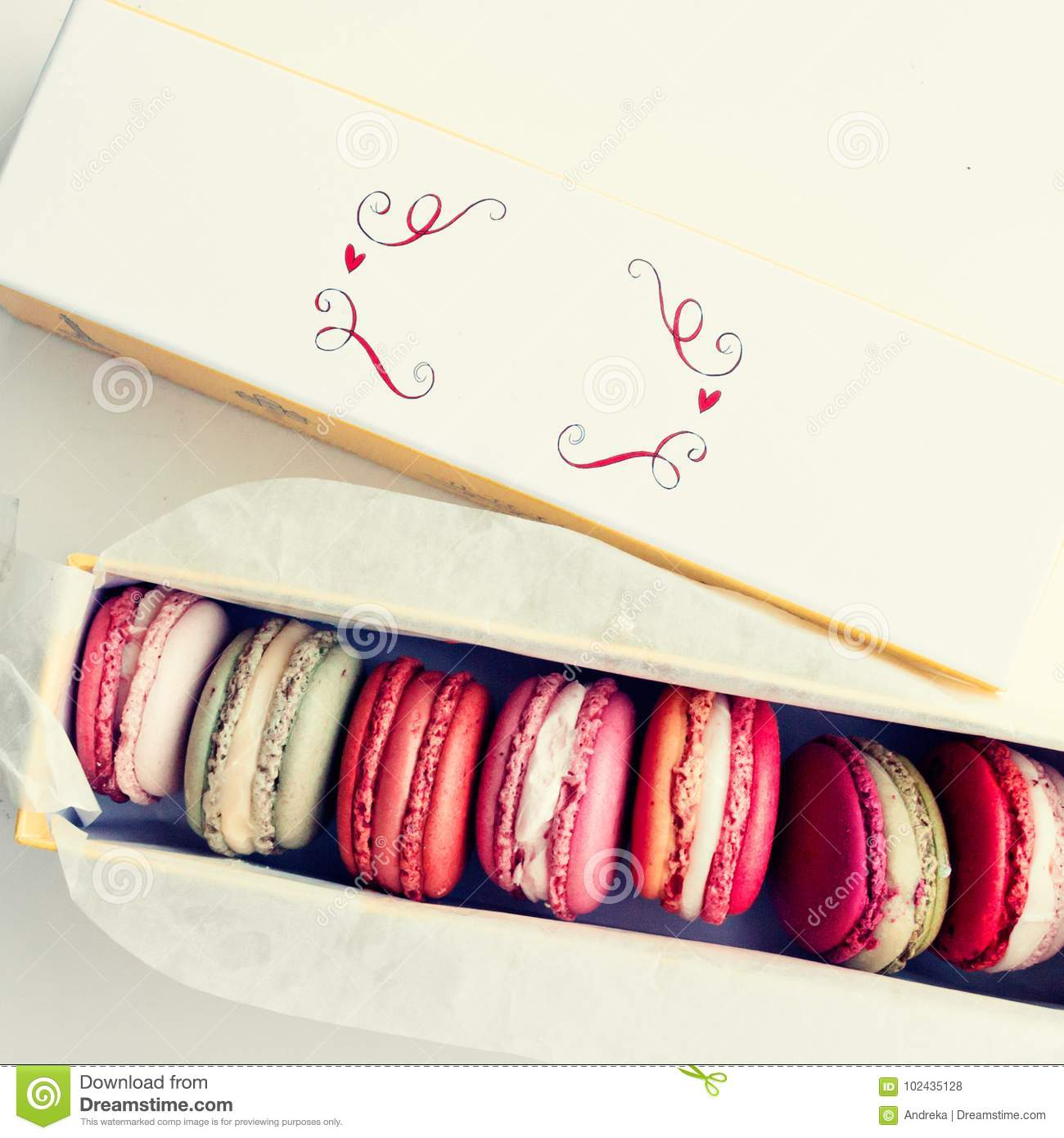 Box Pastel Macarons Wiring Diagrams Moen Ca87524csl Parts List And Diagram Ereplacementpartscom Of Stock Photo Image Macaroons 102435128 Rh Dreamstime Com Blue Cat Macaron