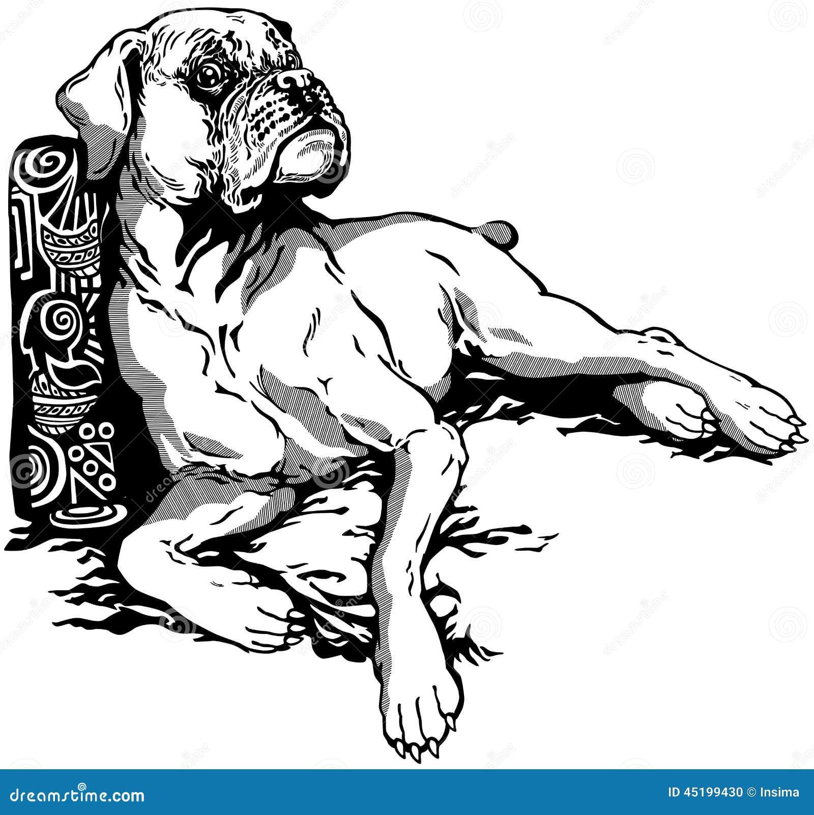 Boxer stock vector image 45199430 - Boxer chien dessin ...